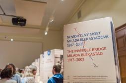 Výstava_MILADA BLEKASTAD-51